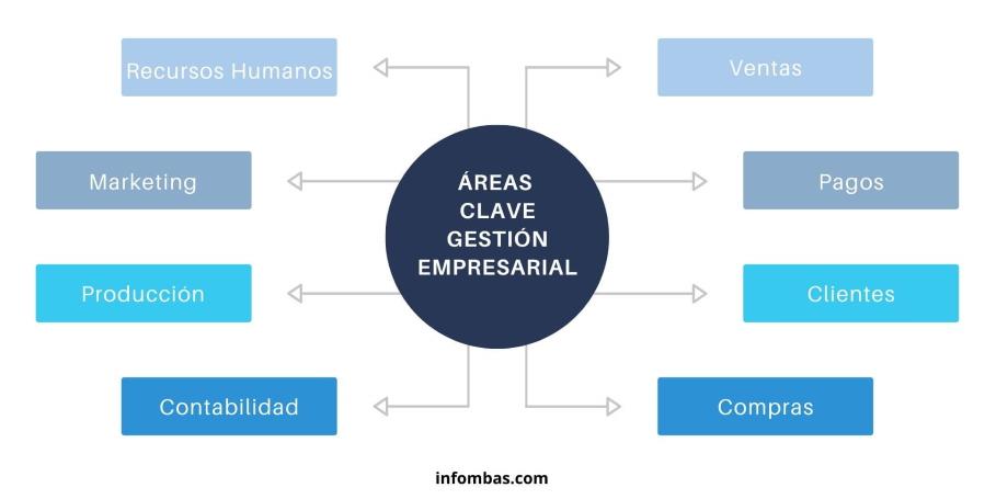Infografía sobre áreas clave de la gestión de empresas